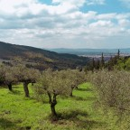 Exploring the Renaissance Ring (Part 1 of 4): 105 miles around the jewel of Tuscany